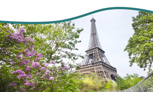 tower eiffel vm